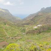 Tenerife28