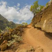 Tenerife35