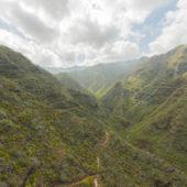 Tenerife36